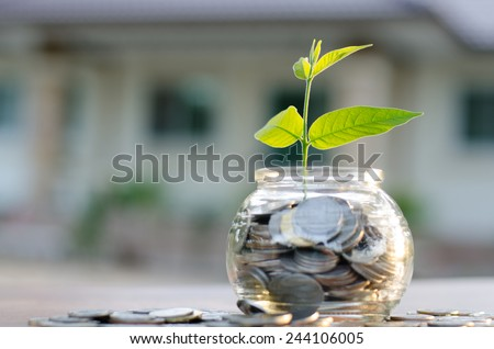 bank,piggy bank,Money,Coins,Concept,Tree, Sprout growing on glass piggy bank with home in saving money concept - stock photo