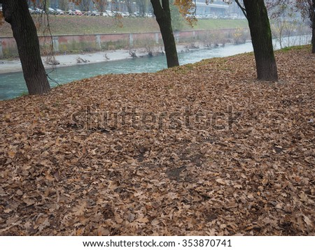 Banks of Dora Riparia river in winter in Regio Parco (meaning Royal Park) quarter in Turin, Italy