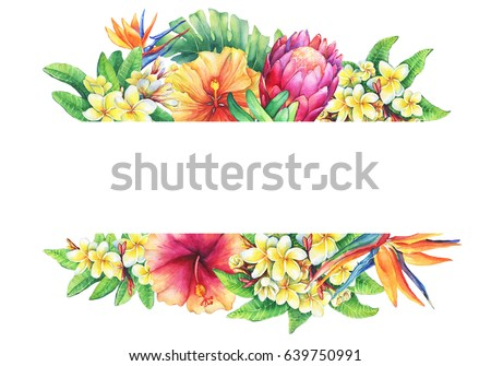 banner branches purple protea plumeria strelitzia stock illustration rh shutterstock com Summer or Hawaii Clip Art Palm Tree Border Clip Art