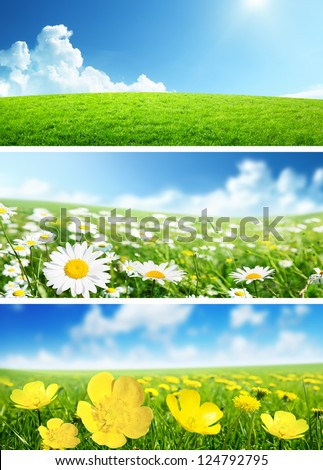 banners of spring flowers and grass - stock photo