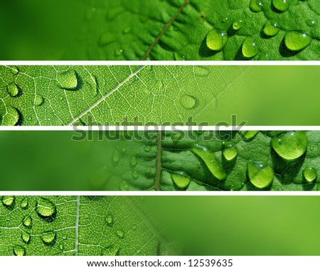 Banners - Water Drops in Nature - stock photo