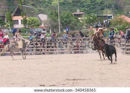 Banos, Ecuador - 30 November 2014: Young Latin Cowboys Chasing A Bull, Public Demonstration In South America In Banos On November 30, 2014 - stock photo