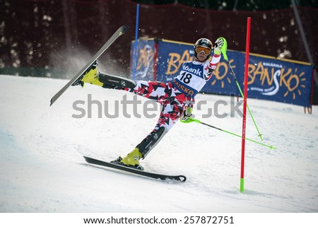 BANSKO, BULGARIA - MARCH 1, 2015: Nicole Hosp (AUT) crashes out of the race during Audi FIS Alpine Ski World Cup Ladies' alpine combined on March  1, 2015 in Bansko, Bulgaria. - stock photo
