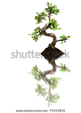 Banzai isolated on a white background - stock photo