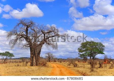 Baobab or  boab, boaboa, bottle tree, upside-down tree, and monkey bread tree Tarangire National Park is the sixth largest national park in Tanzania after Ruaha, Serengeti, Mikumi, Katavi and Mkomazi