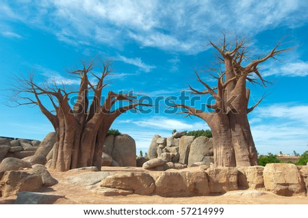 Baobab Tree at blue sky background