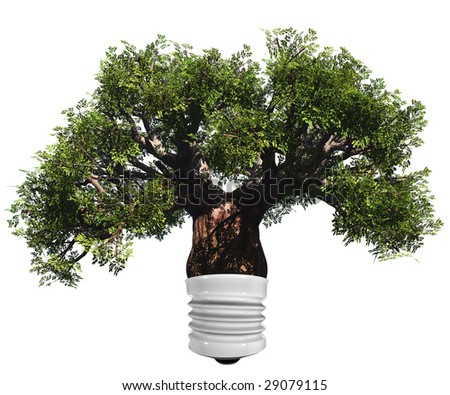 baobab tree isolated on white background as a lamp ,ideal for nature, season or conceptual designs. It is a conceptual image for sustainable, ecological and energy designs. - stock photo