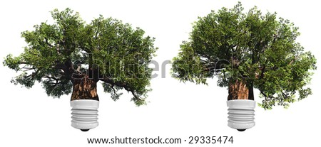 baobab trees set or collection  isolated on white background as a lamp ,ideal for nature, season or conceptual designs. It is a conceptual image for sustainable, ecological and energy designs. - stock photo