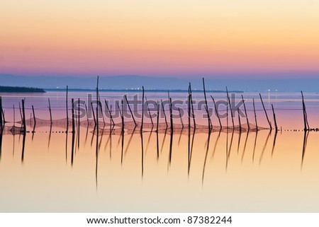 bar code of the lake - stock photo