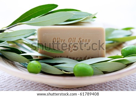bar of organic olive oil soap with branch of olives - beauty treatment - stock photo