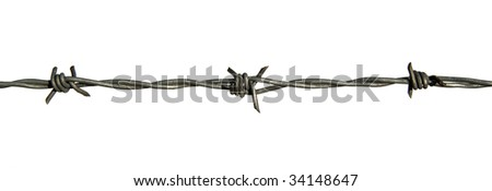 Barb wire with clipping path - stock photo