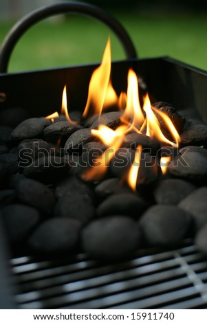 Barbecue charcoals - stock photo