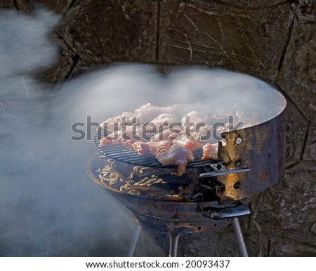 barbecue grill with chicken chops - stock photo