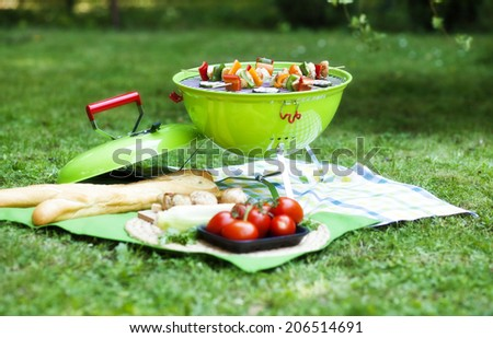 barbecue on a grilling pan  - stock photo