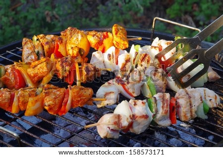 barbecue shashlik  - stock photo