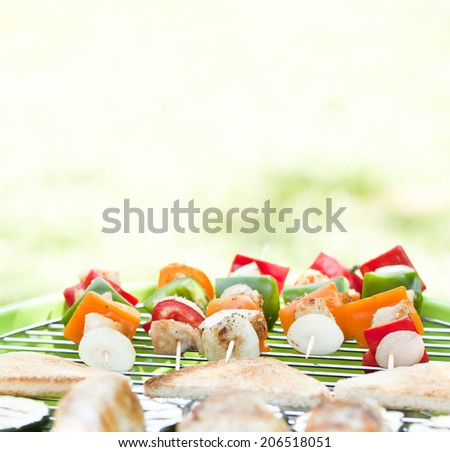 barbecue skewers - stock photo