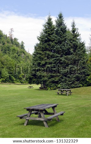 Barbecue tables on green grass in sunny day - stock photo