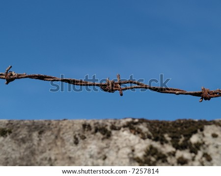 Barbed wire and blue sky - stock photo