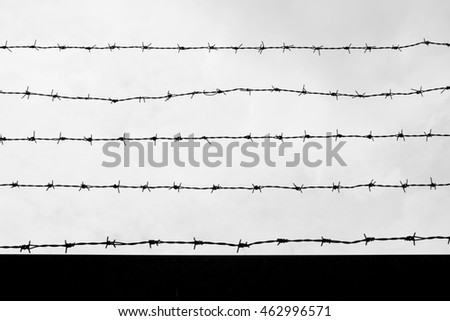 Barbed wire, black and white