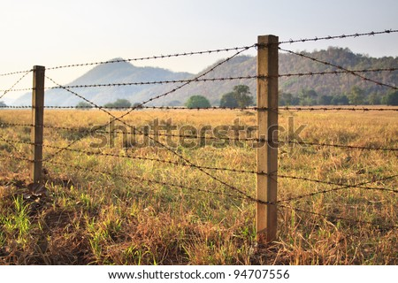 Barbed wire fence and grass field - stock photo