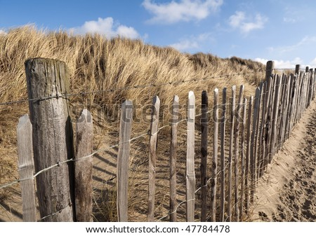 Barbed Wire Fence in The Hague's West Dune Park - stock photo