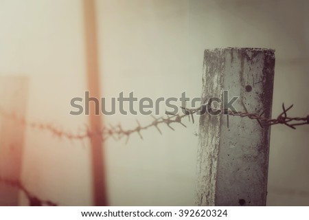 Barbed Wire Fence Process Vintage Tone Stock Photo 392620324 ...