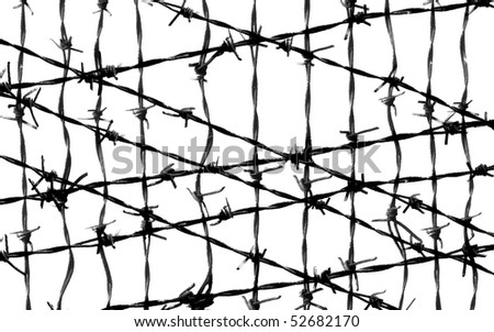 barbed wire fence protection isolated on white for background texture - stock photo