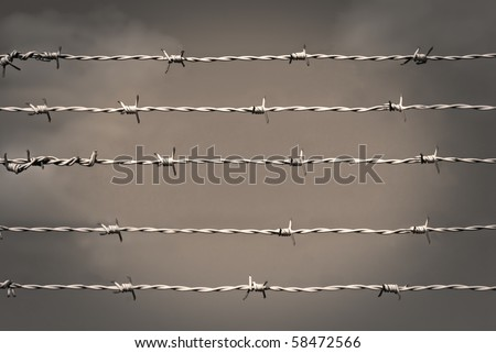Barbed wire in sepia - stock photo