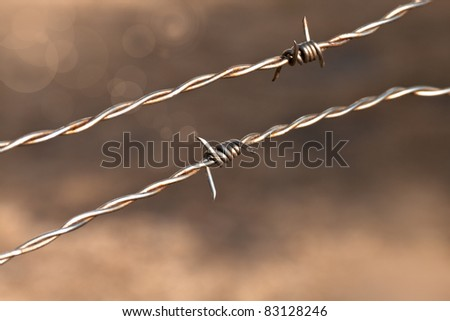 barbed wire is a metaphor  limiting human freedom - stock photo