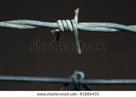 barbed wire macro - stock photo