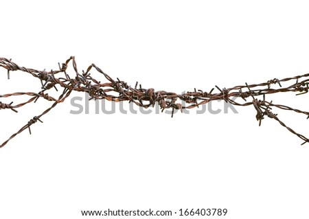 Barbed wire macro closeup, old aged detailed weathered grunge isolated barbwire - stock photo