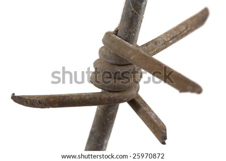 barbed wire macro isolated on white