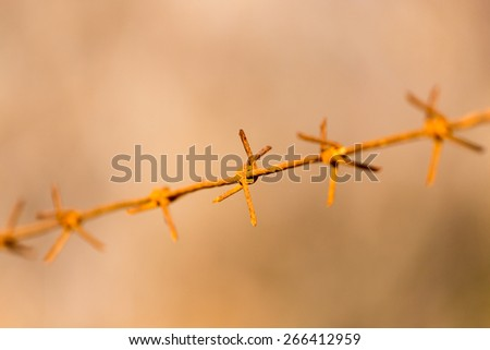 barbed wire on nature - stock photo