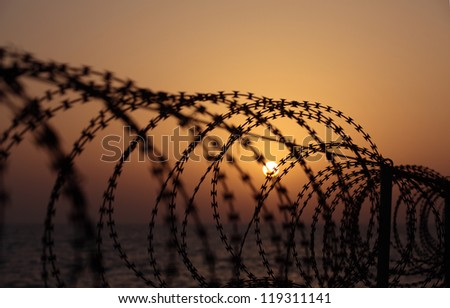 Barbed wire on sunset sky background - stock photo