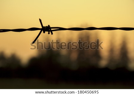 Barbed wire on sunset sky, Select focus - stock photo