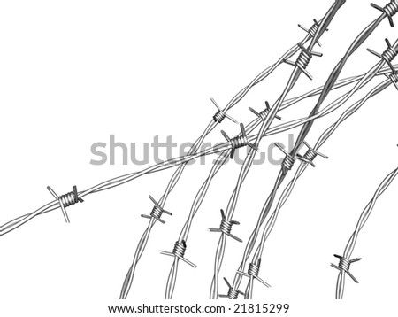 barbed wire with clipping path on white background - stock photo