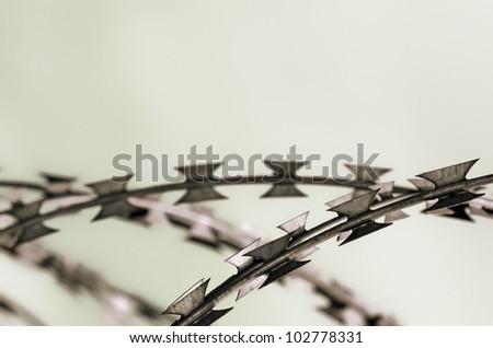 Barbed wire with copy space
