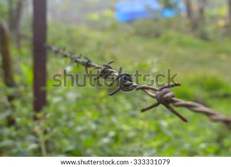 barbed wire with one node in focus