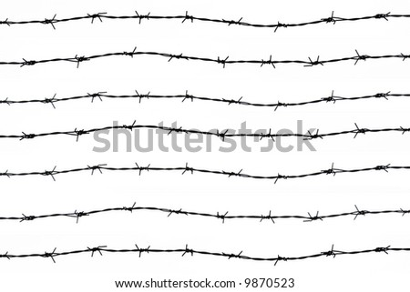 barbed wires - stock photo