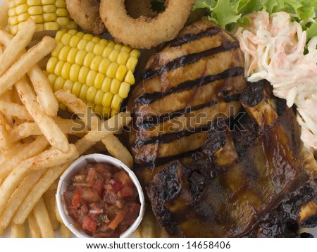 Barbeque Chicken and Ribs with Fries Slaw and Salsa - stock photo