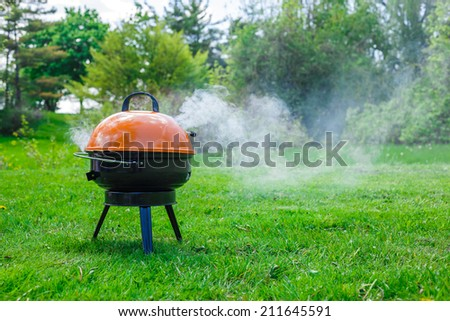 Barbeque grill on a grass in the park - stock photo