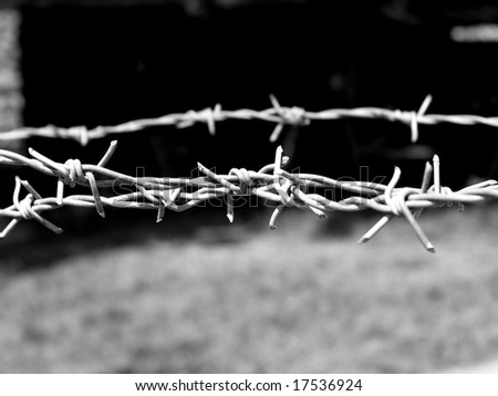 Barbwire - stock photo