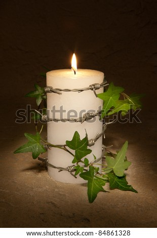 Barbwire and ivy curling around a burning candle, symbol of Amnesty International and civil rights - stock photo