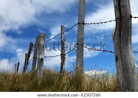 Barbwire wall - stock photo