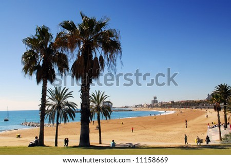 Barcelona beach with palm trees - stock photo
