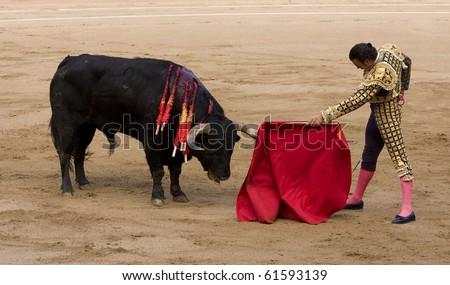 "BARCELONA - JUNE 6: ""Corrida"" (bullfighting) of bulls, typical Spanish tradition where a torero (bullfighter) kills a bull. In the picture, ""Finito de Cordoba"". June 6, 2010 in Barcelona (Spain). - stock photo"