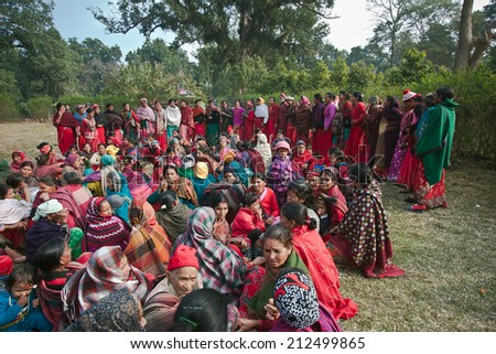 Bardia, Nepal - January 16, 2014: Taru women group making traditional dance in Bardia, Nepal during Maggy festival