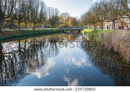 Bare branches on the trees along a Dutch city canal on a sunny day in the fall season.