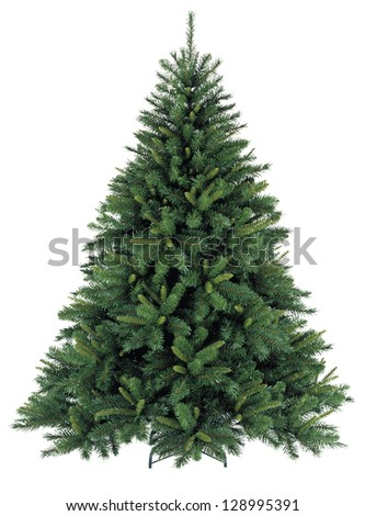 Bare Christmas tree without decoration - stock photo
