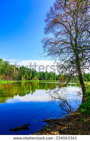 Bare Tree near Lake Surrounded by Colorful Trees in Autumn Season - stock photo